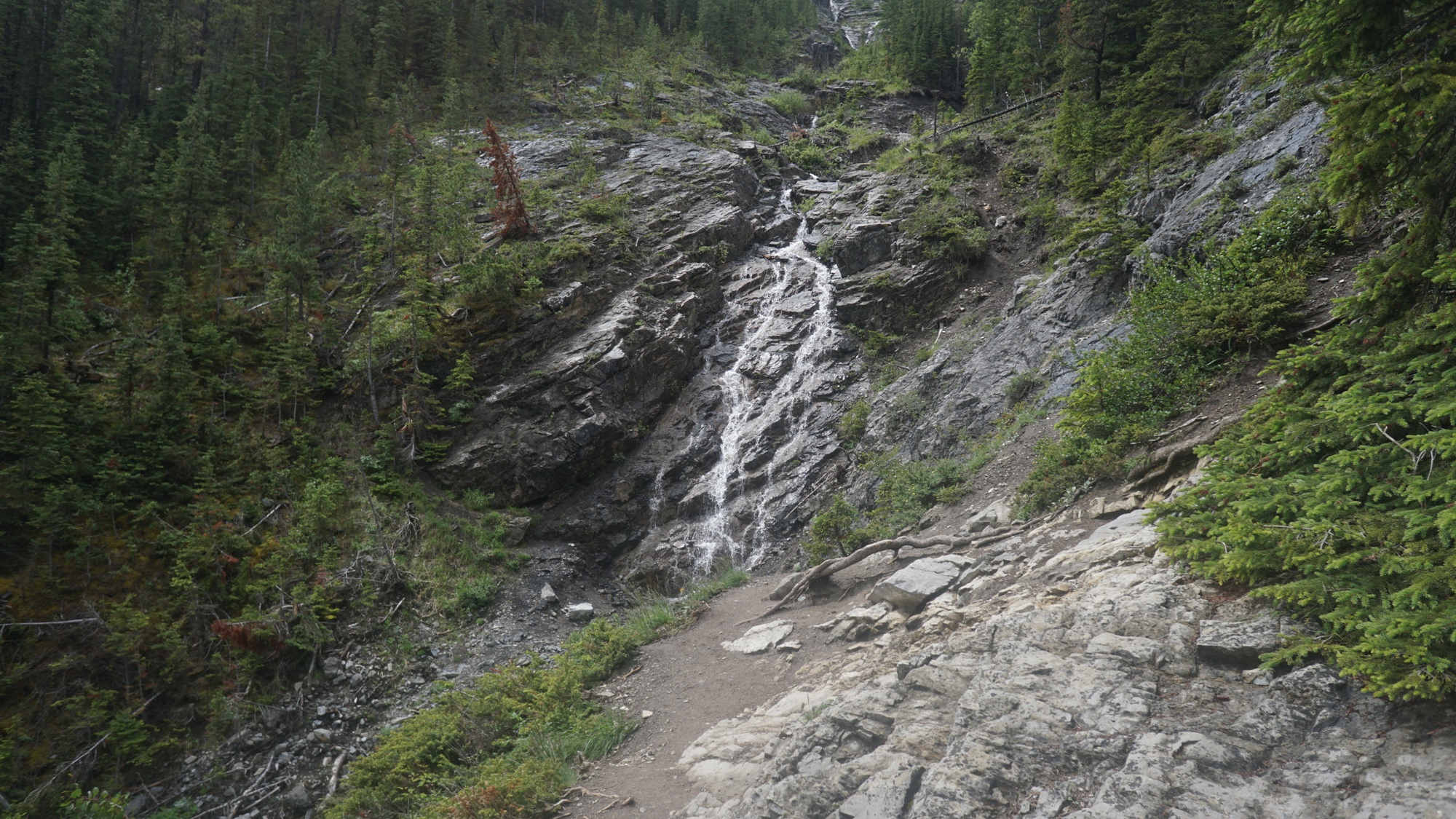 Ein Wasserfall am Sulphur Mountain Trail.